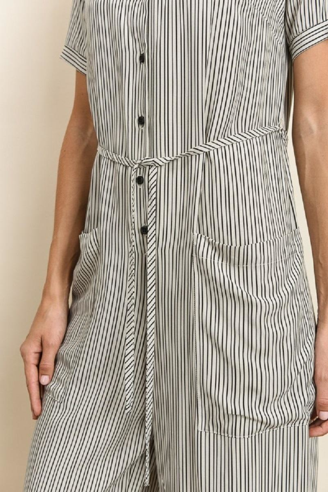 dress forum Button Down Striped Jumpsuit - Back Cropped Image