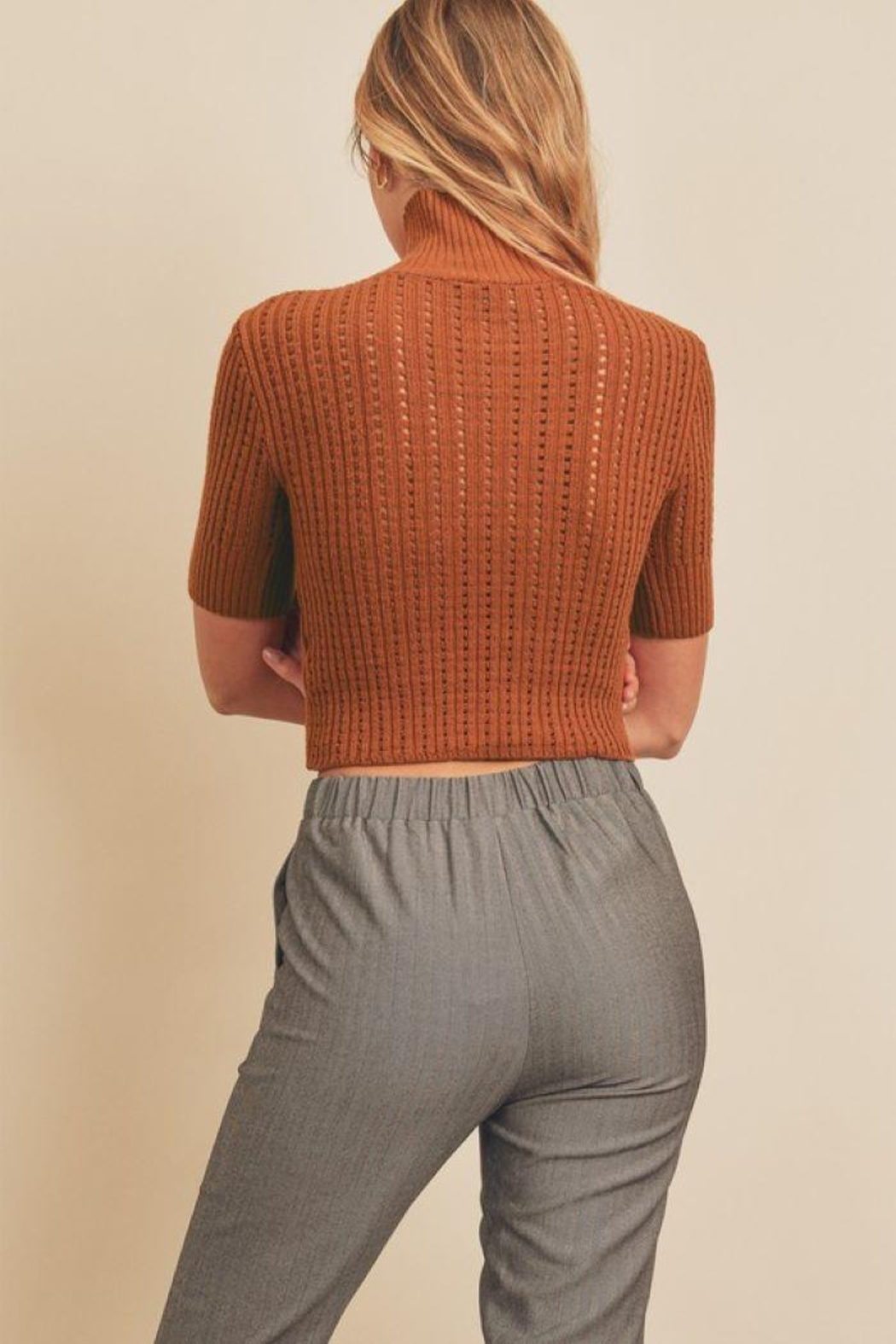 dress forum Turtle Neck Open Stitch Knit Top - Back Cropped Image