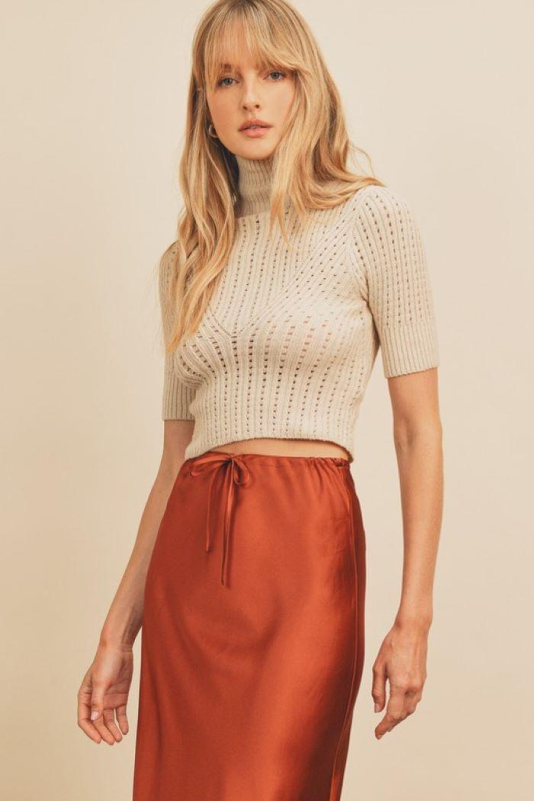 dress forum Turtle Neck Open Stitch Knit Top - Front Cropped Image