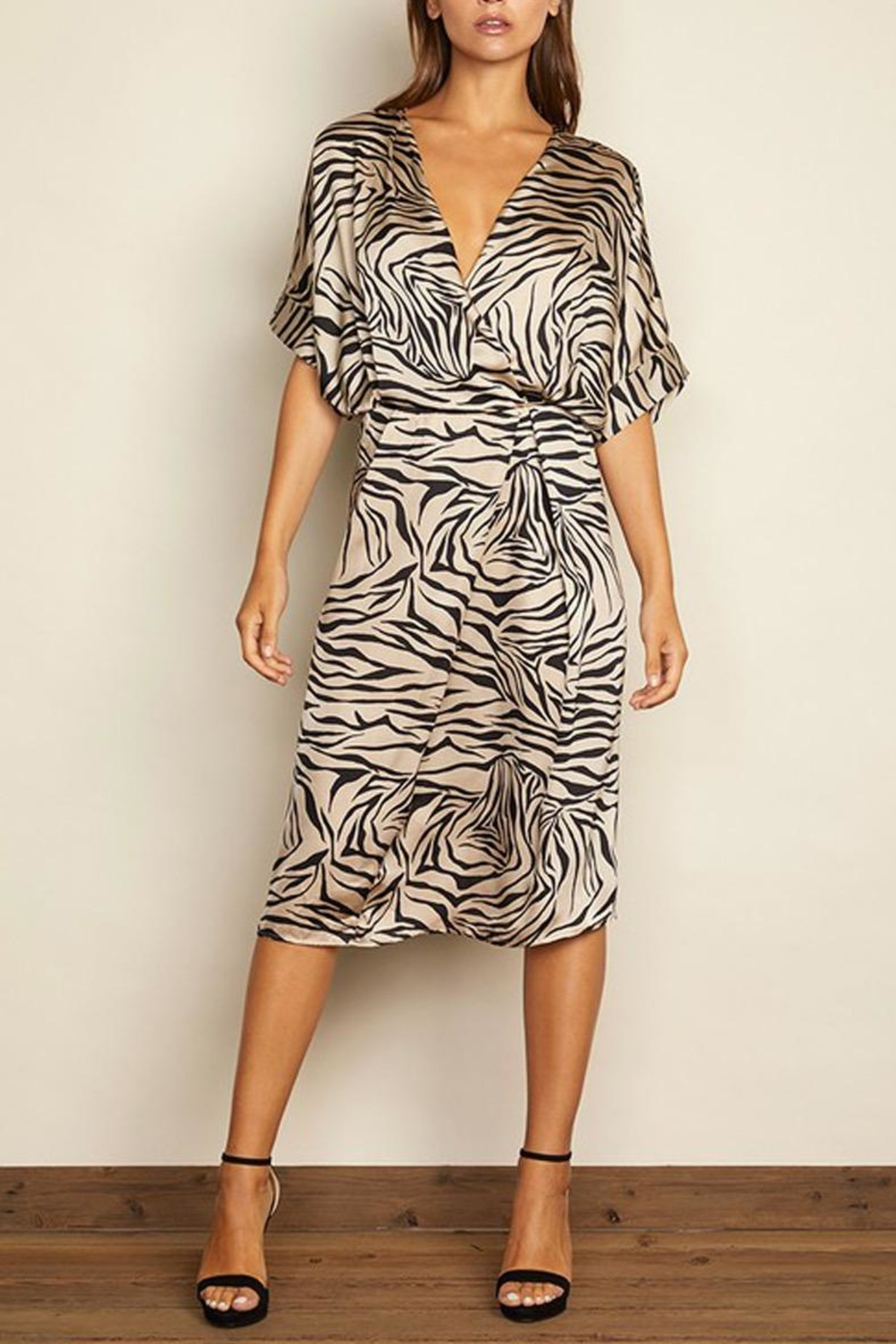 dress forum Zebra Surplice Dress - Front Full Image