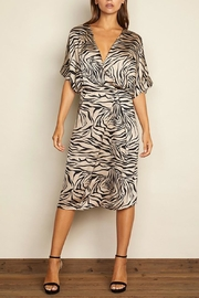 dress forum Zebra Surplice Dress - Front full body