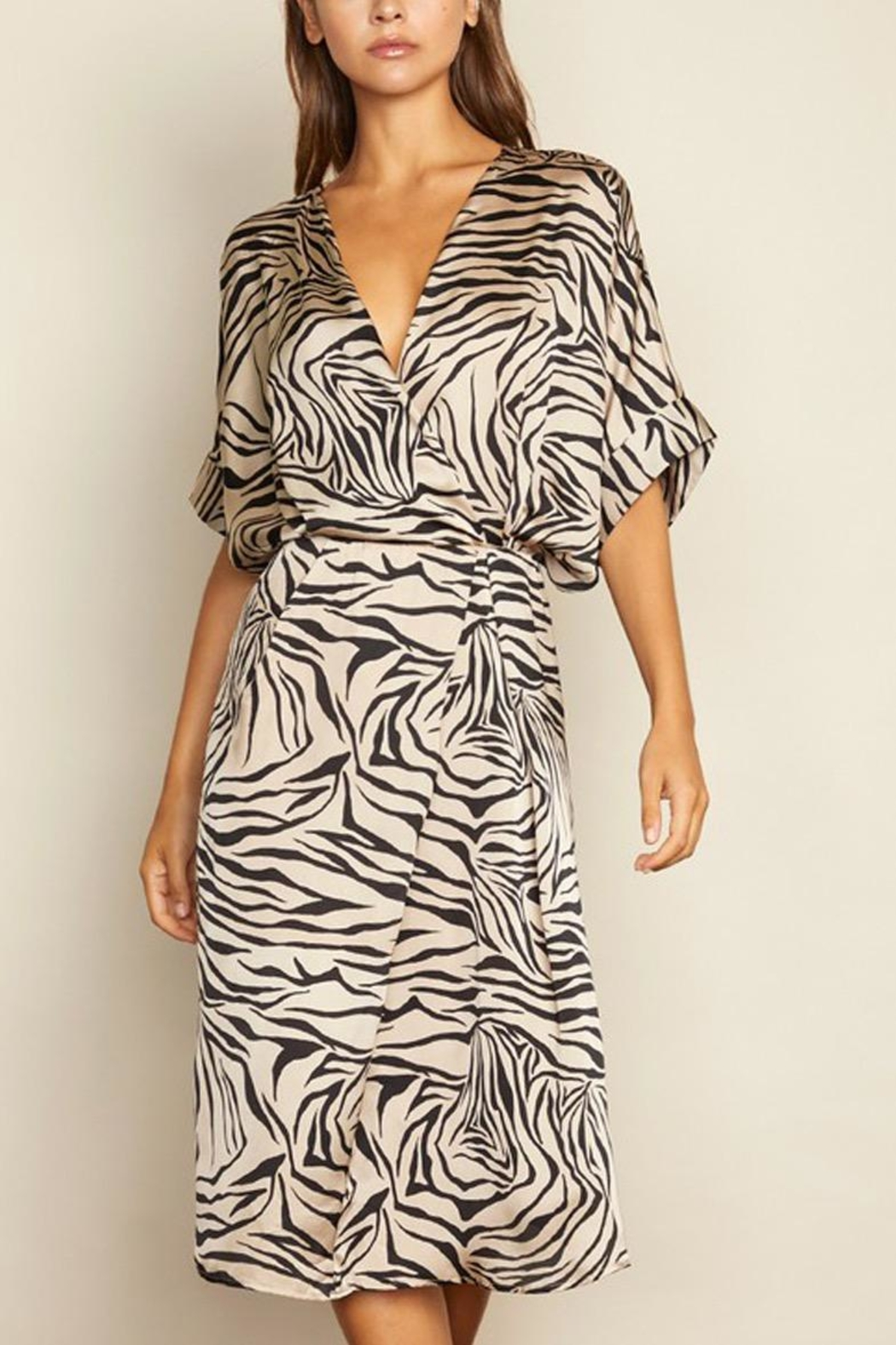 dress forum Zebra Surplice Dress - Main Image