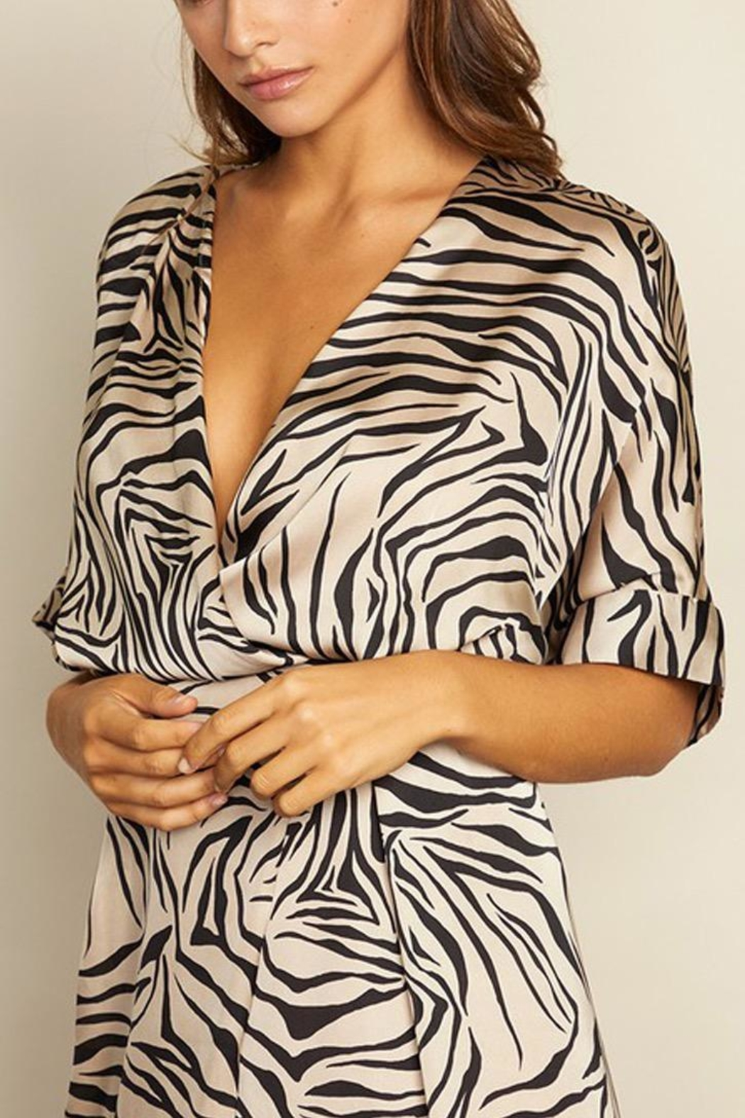 dress forum Zebra Surplice Dress - Side Cropped Image