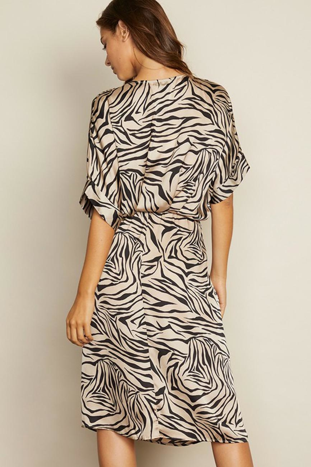 dress forum Zebra Surplice Dress - Back Cropped Image