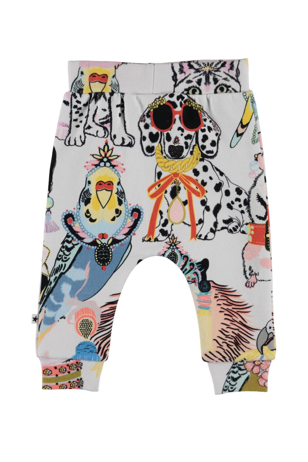 Molo Dressy Pets Trousers - Front Full Image