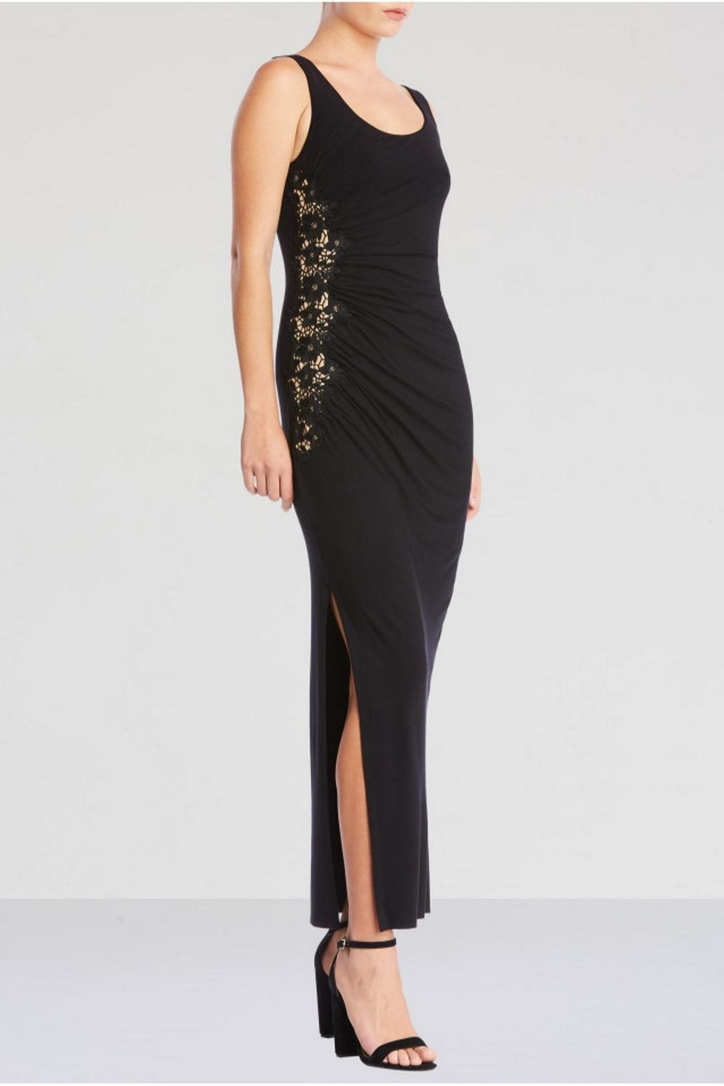 Bailey 44 Drizzle Cake Dress - Front Full Image