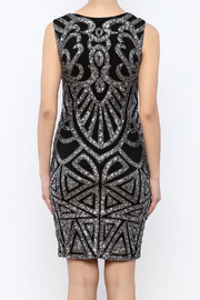 Dry Lake Sleeveless Sequin Dress - Back cropped