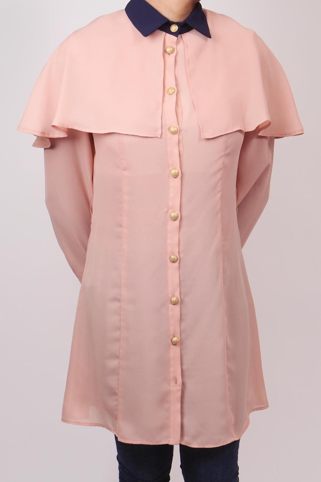 The Cue Blush Chiffon Blouse - Main Image
