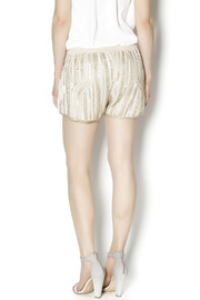 Wish Collection Sequin Track Shorts - Back cropped