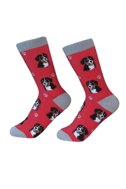 E & S Pets Bernese Mountain Socks - Product Mini Image