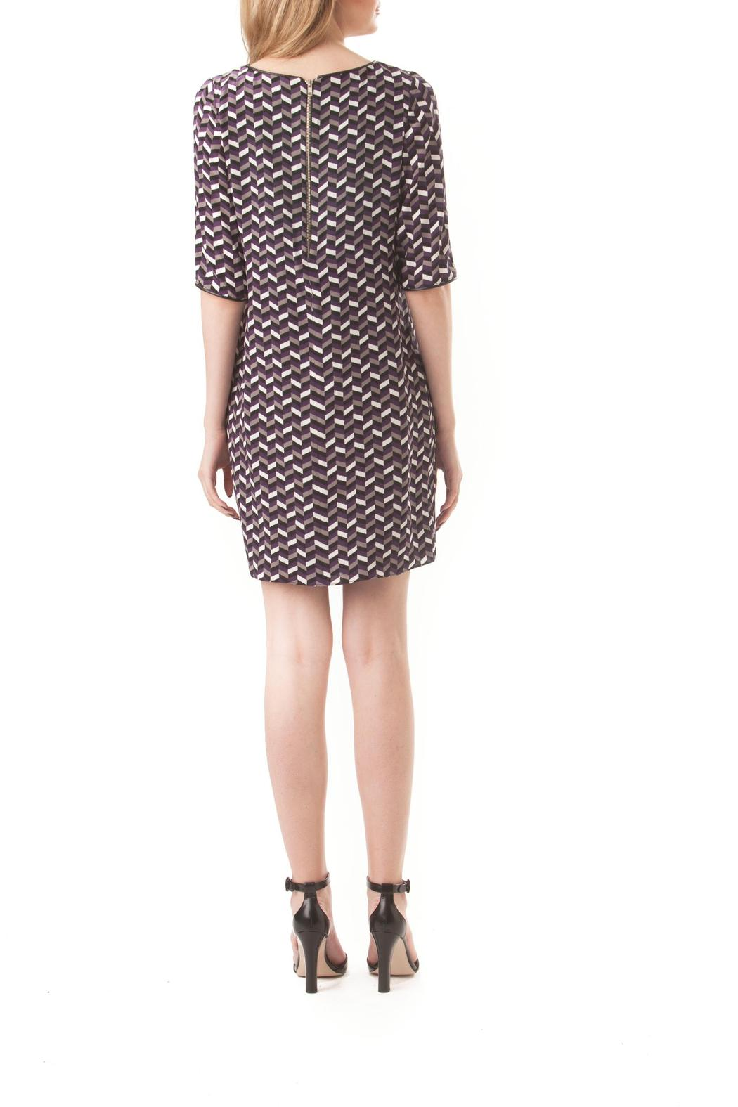 Leona Silk Chevron Dress - Back Cropped Image