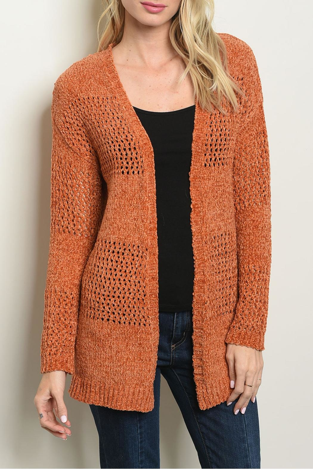 Cozy Casual Earth Knit Sweater - Main Image