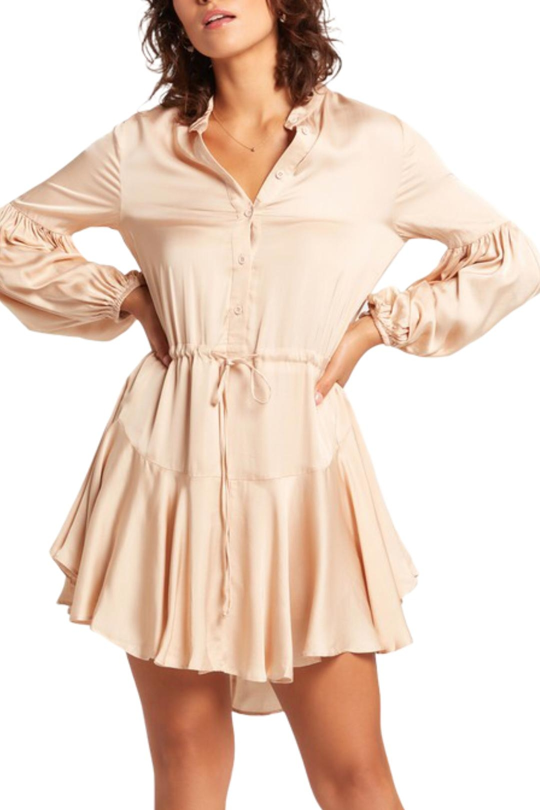 Earthy Chic Charo Mini Dress - Front Full Image