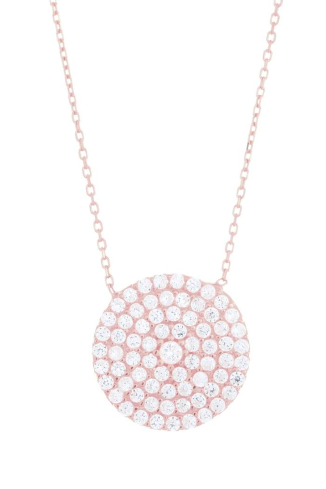 Earthy Chic Dazzling Disk Necklace - Front Cropped Image