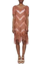 easel Fringe Sweater Tunic - Front cropped