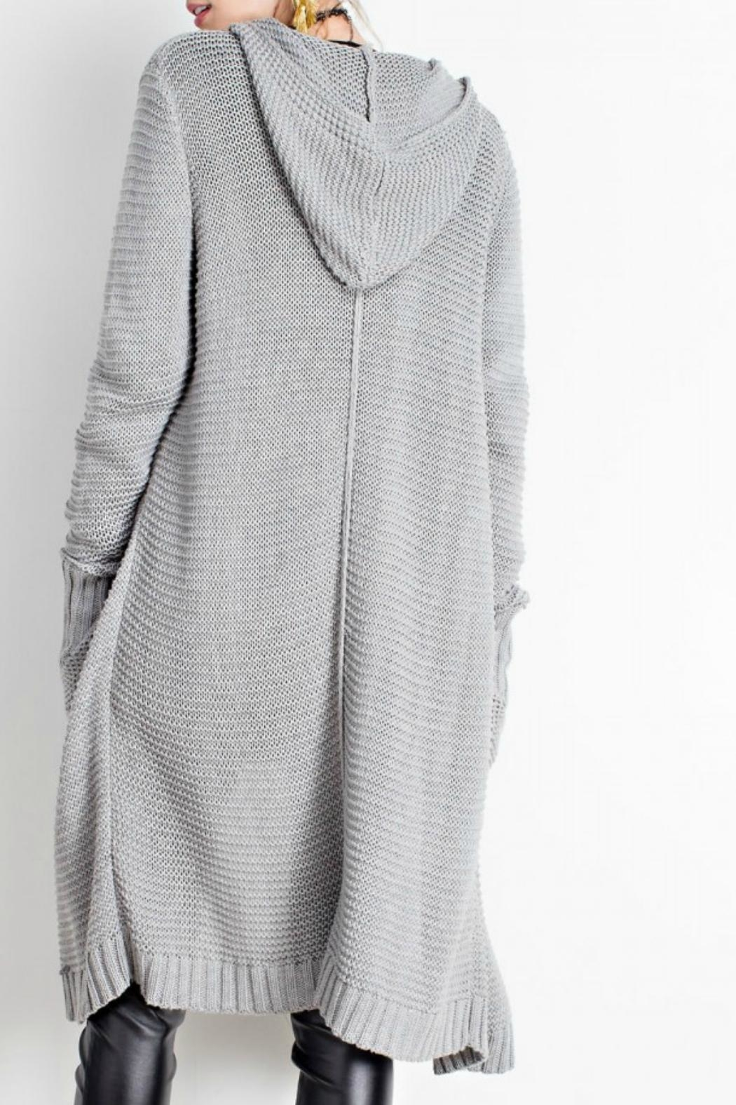 easel Hooded Cardigan - Front Full Image