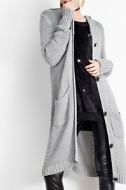 easel Hooded Cardigan - Front cropped
