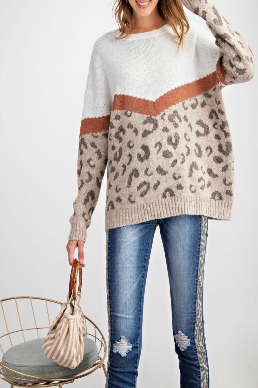 easel Leopard-Print Pullover Sweater - Main Image