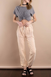easel Mineral Washed Sweatpant - Front cropped