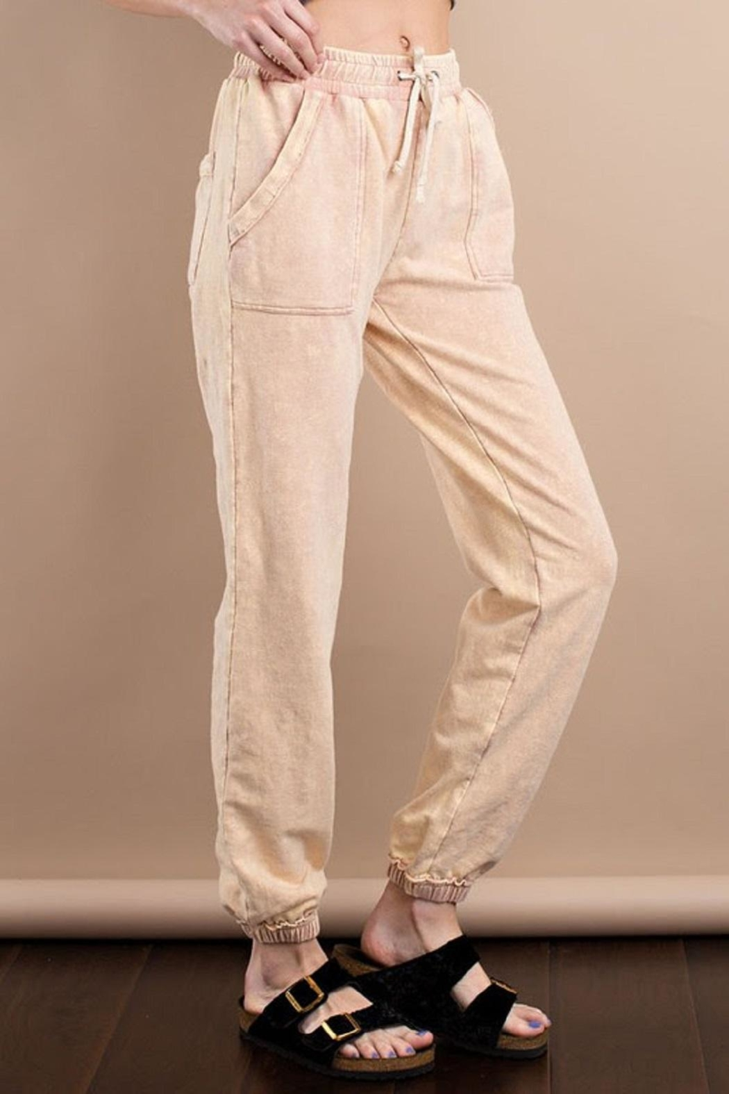 easel Mineral Washed Sweatpant - Front Full Image