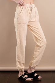 easel Mineral Washed Sweatpant - Front full body