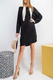 easel Sweater Tunic Dress - Other