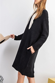 easel Sweater Tunic Dress - Back cropped