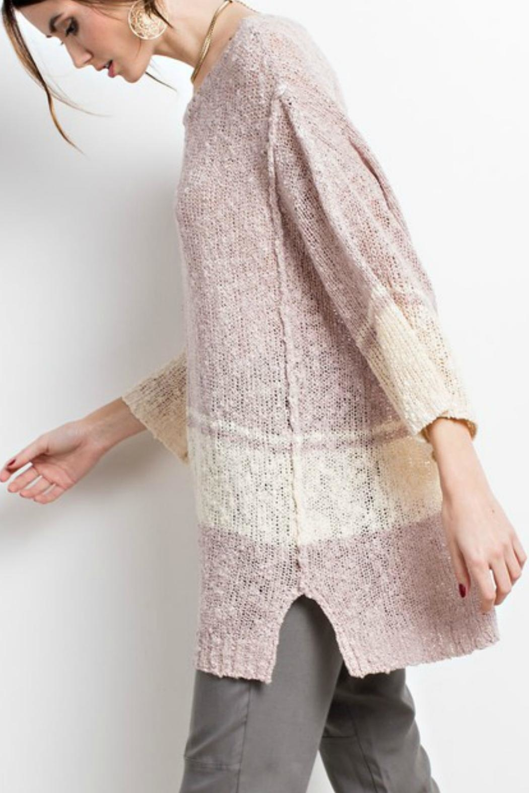 easel The Danielle Sweater-Tunic - Back Cropped Image