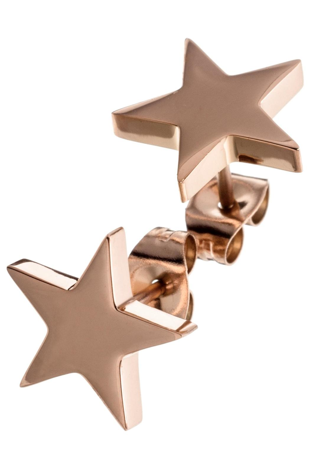 e2384ce1f Edblad Rose Gold Star Studs from West Sussex by Rare Rabbit — Shoptiques