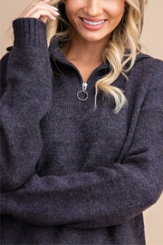 eesome High Hopes Sweater - Back cropped