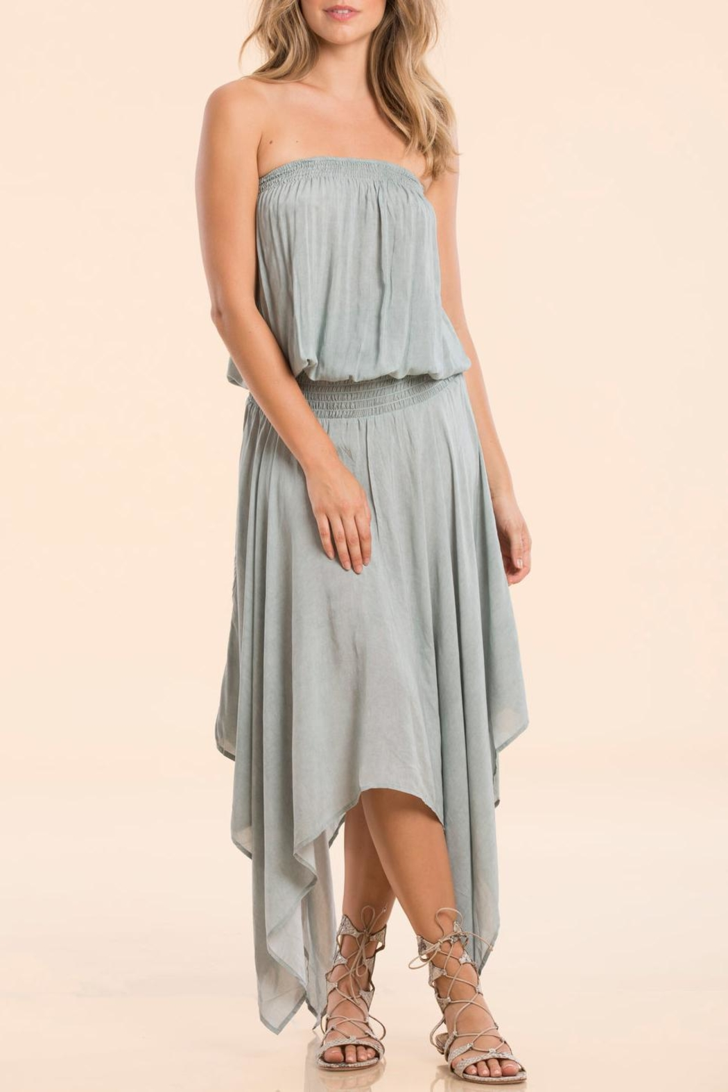 Elan Dress Smock Waist - Main Image