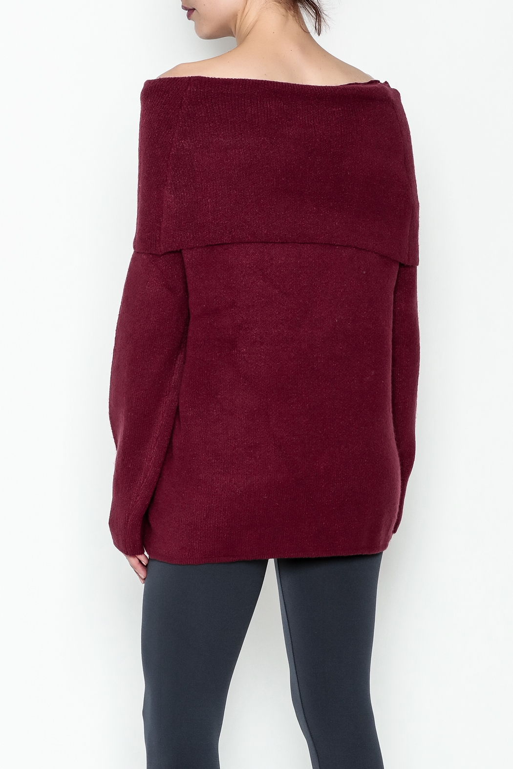 Elan Pullover Knit Sweater - Back Cropped Image