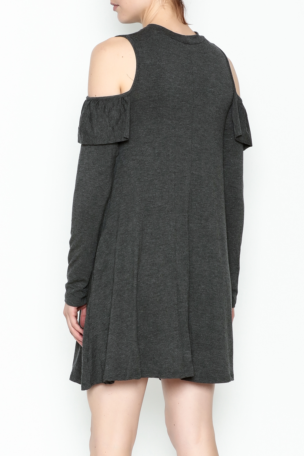 Elan Ruffle Swing Dress - Back Cropped Image