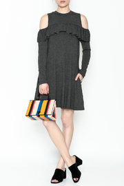 Elan Ruffle Swing Dress - Product Mini Image