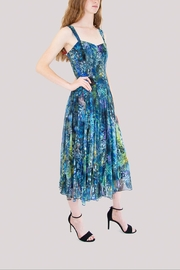 Elana Kattan Blue Floral Mesh Dress - Product Mini Image
