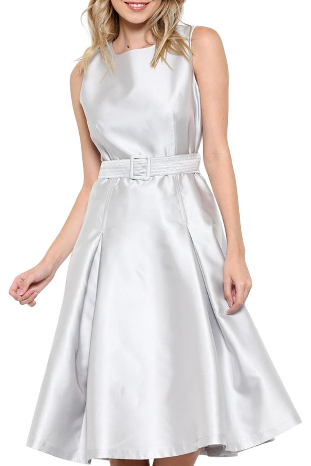 Elegance by Sarah Ruhs Belted Silver Dress - Main Image