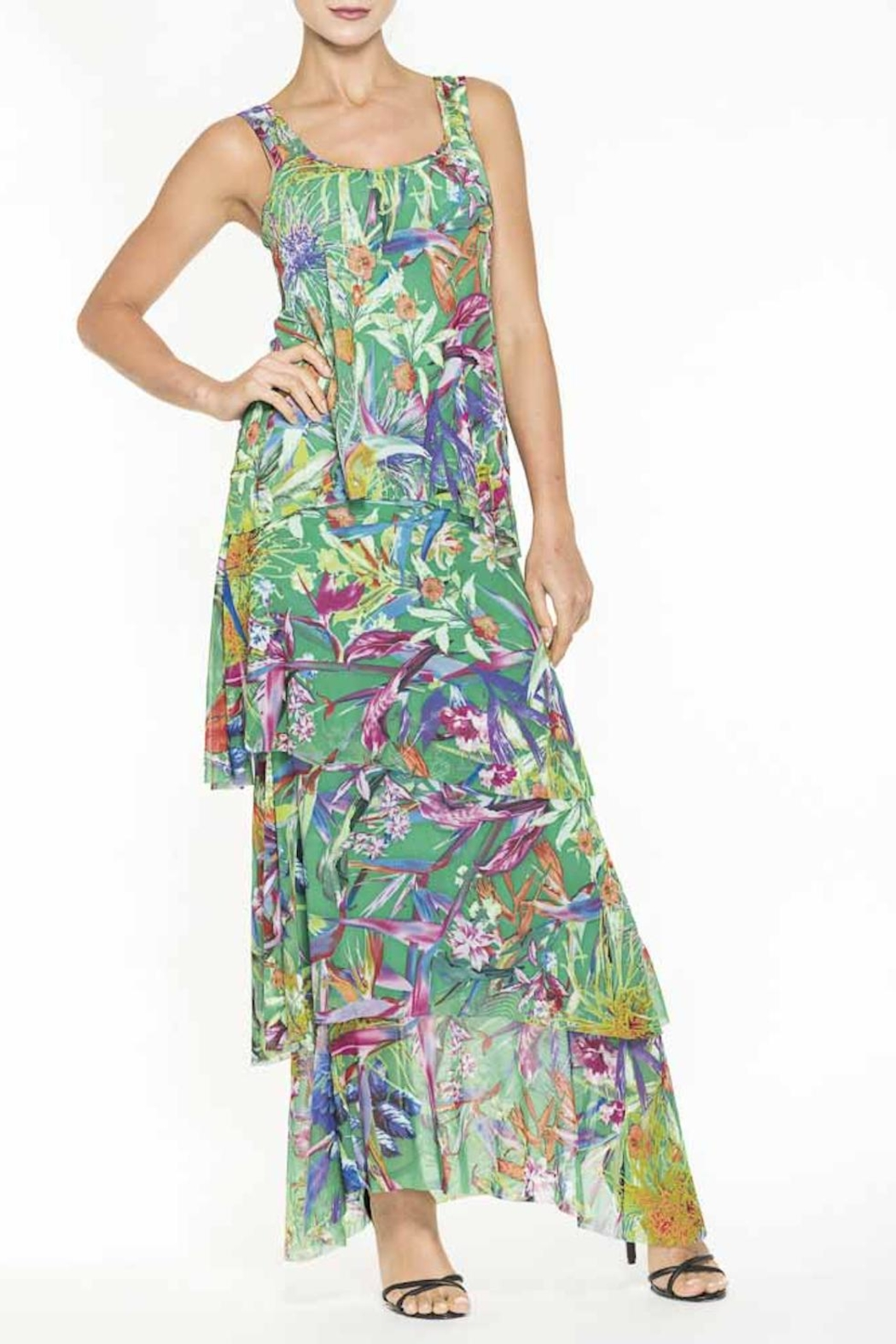 Elena Wang Maxi Floral Dress - Front Cropped Image