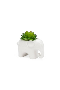 Torre & Tagus Elephant Faux Succulent - Alternate List Image
