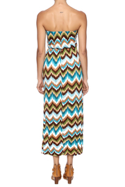 Elise Colby Chevron Maxi - Back cropped