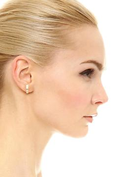Shoptiques Product: Quinn Stud Earrings