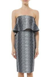 Elizabeth & James Ikat Aisling Skirt - Back cropped