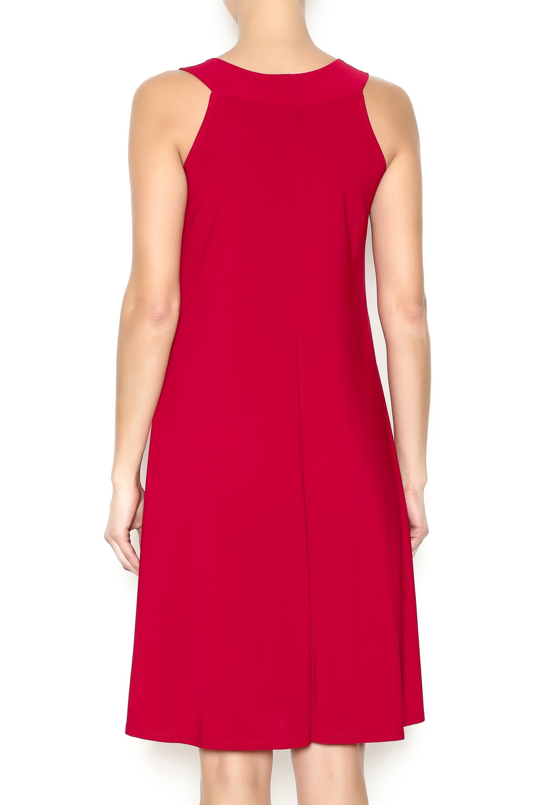 Ellen Parker Red Trapeze Dress - Back Cropped Image