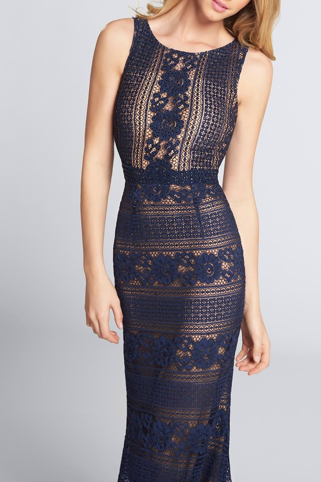 Ellie Wilde Sleeveless Lace Evening - Front Cropped Image