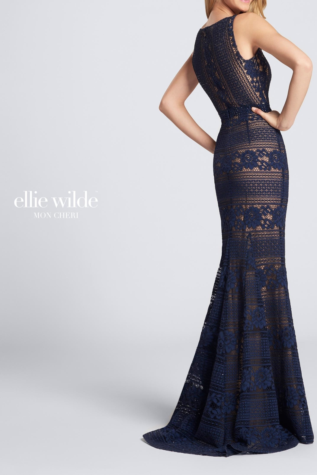 Ellie Wilde Sleeveless Lace Evening - Front Full Image