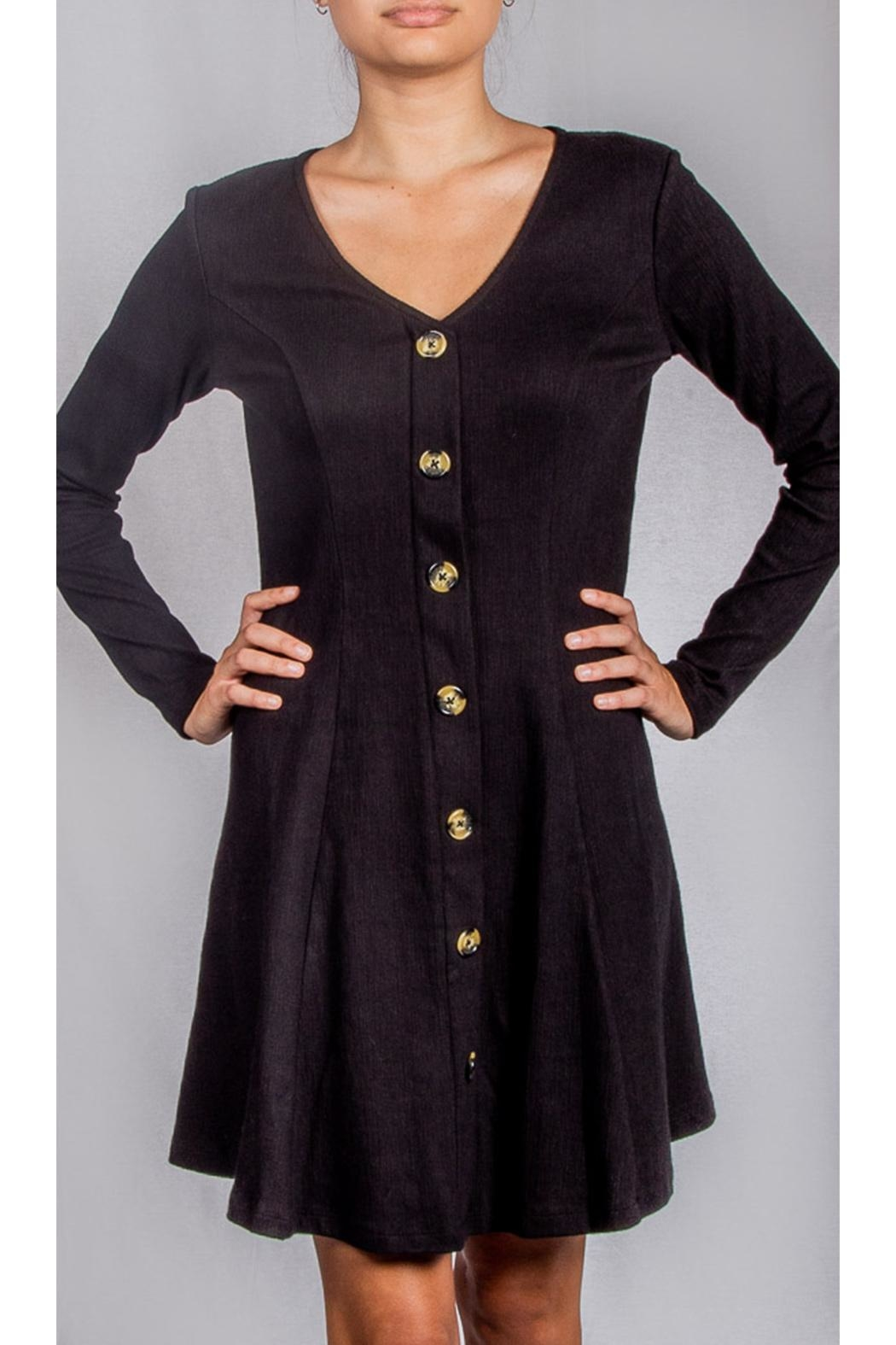 Ellison Black Buttondown Dress - Front Cropped Image