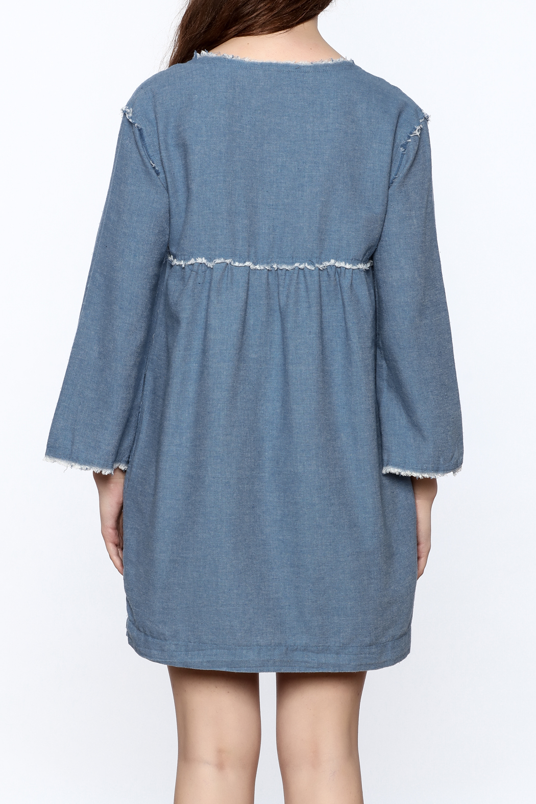 Ellison Frayed Denim Dress - Back Cropped Image