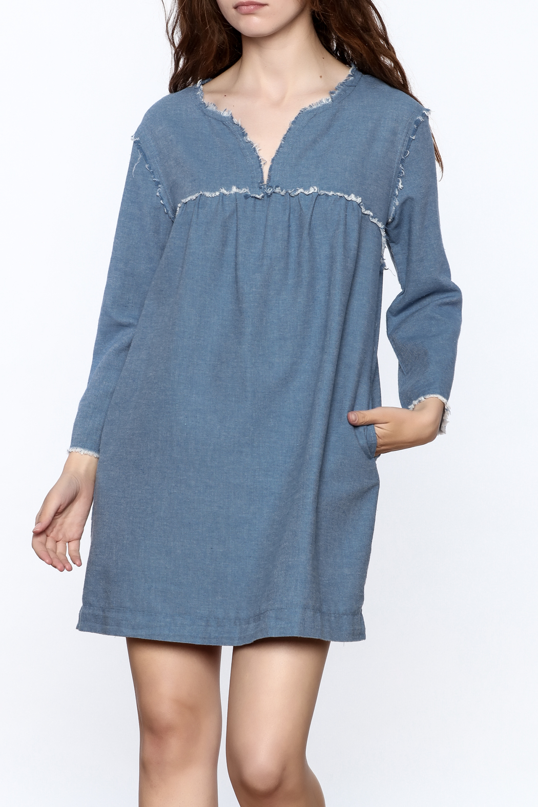 Ellison Frayed Denim Dress - Front Cropped Image