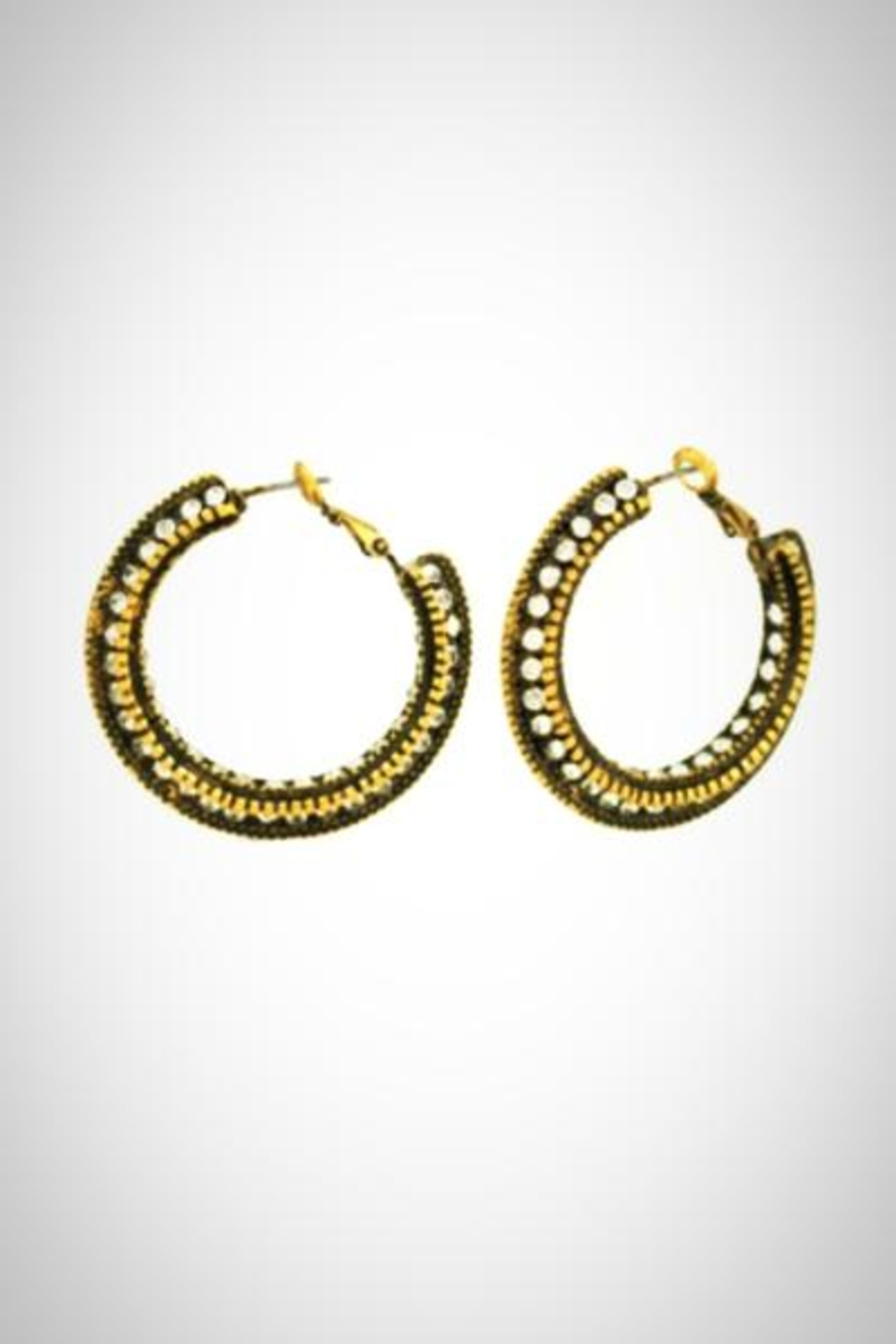 Embellish Antique Hoop Earrings - Front Cropped Image