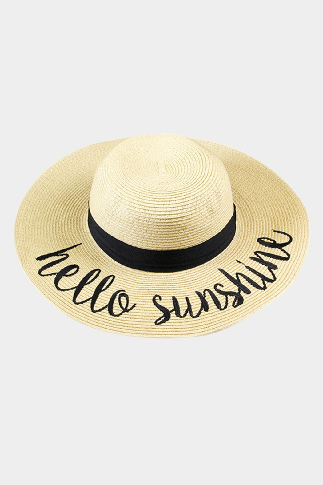 Embellish Embroidered Straw Hat - Front Full Image