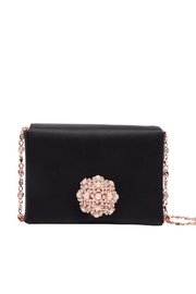 Ted Baker London Embellished Crossbody Bag - Product Mini Image